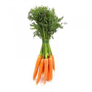 carote biologiche siciliane